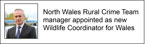 Rob Taylors appointment